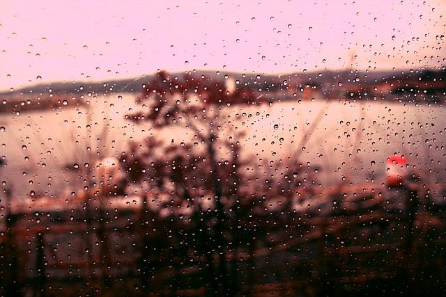 비오는날.