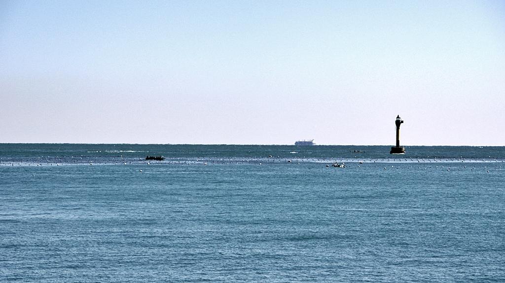 해운대 앞바다